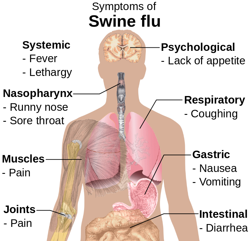 causes of the flu What made this flu different from all other flus was a dramatically higher fatality rate, plus the fact that while ordinary flus claimed casualties among the very young and the very old, this.
