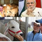 Cow protection and the vigilantes – What's there in PM Modi's mind?