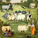 Glories of Cows and why Humans worship them